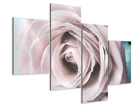 Aluminiumbild 4-teilig modern Pastellrose