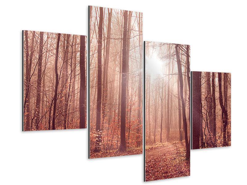 Aluminiumbild 4-teilig modern Sonnenuntergang im Herbstwald