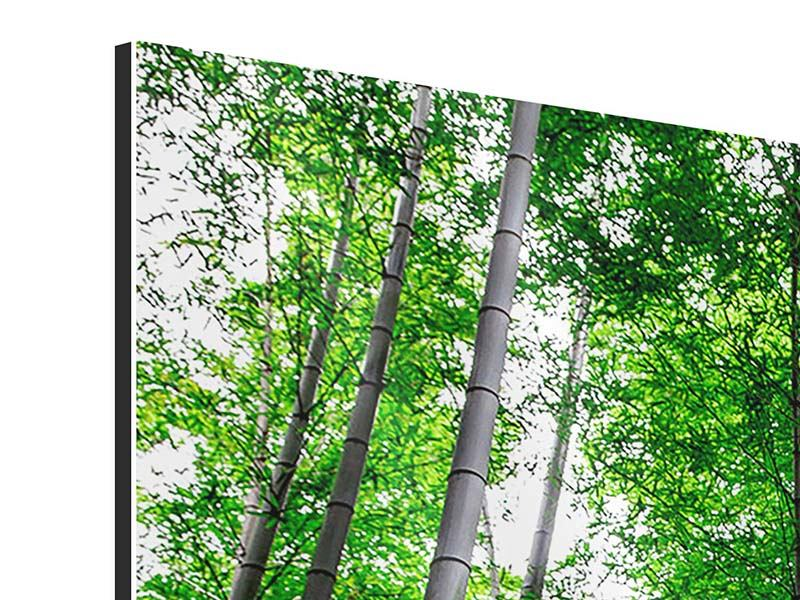 Aluminiumbild 4-teilig modern Bambuswald