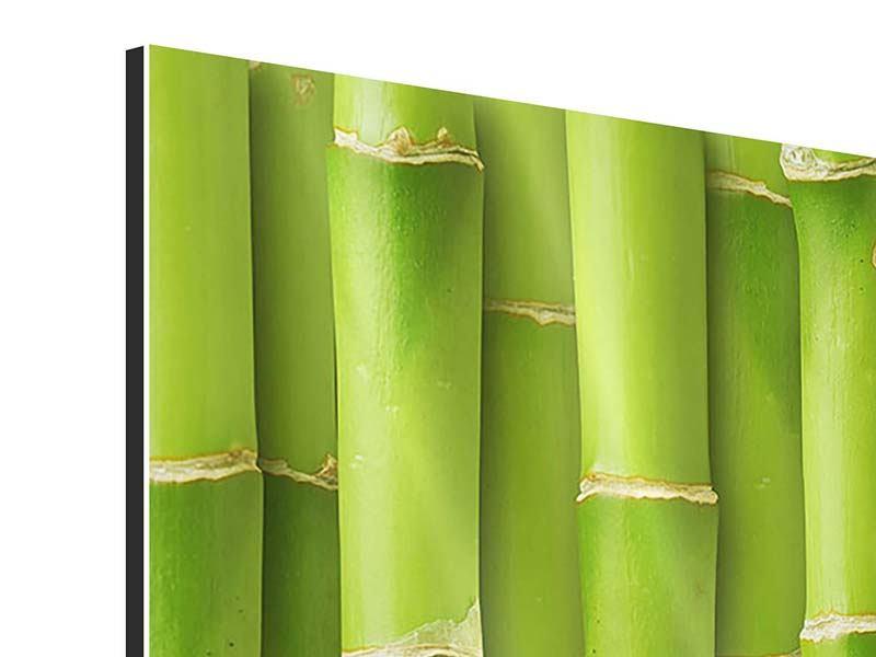 Aluminiumbild 4-teilig modern Bambuswand