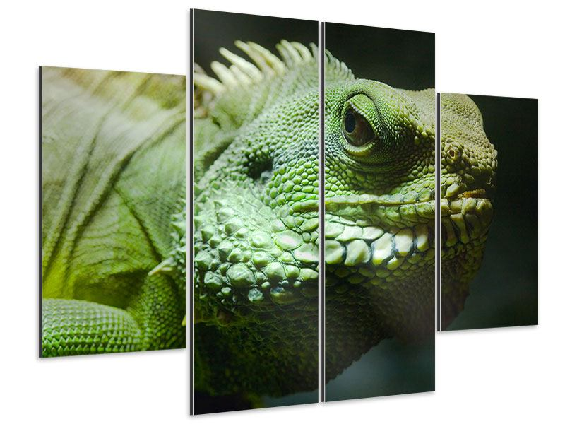 Aluminiumbild 4-teilig XXL Leguan