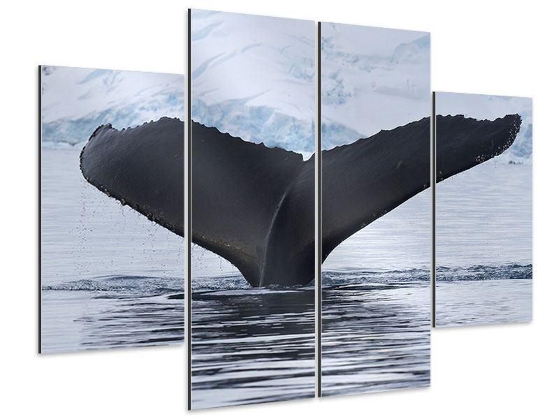 Aluminiumbild 4-teilig Der Buckelwal