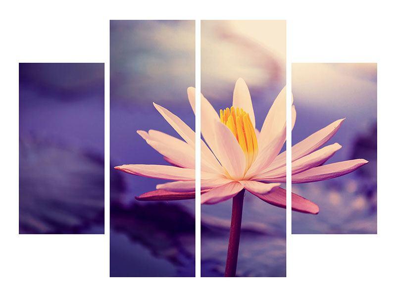 Aluminiumbild 4-teilig Lotus bei Sonnenuntergang