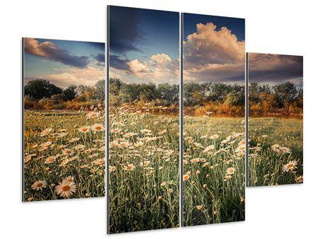 Aluminiumbild 4-teilig Die Wiesenmargerite am Fluss