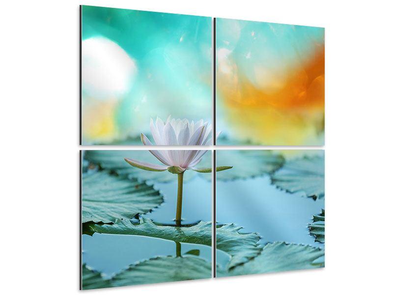 Aluminiumbild 4-teilig Verträumte Lotus