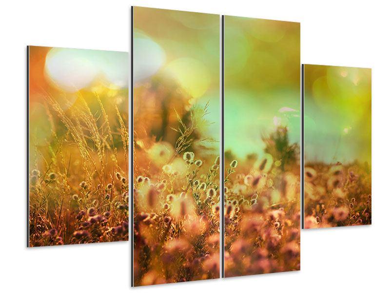 Aluminiumbild 4-teilig Blumenwiese in der Abenddämmerung