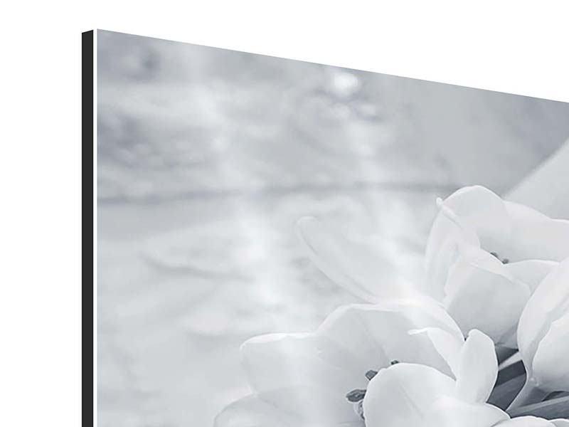 Aluminiumbild 4-teilig Romantisches Tulpenbukett