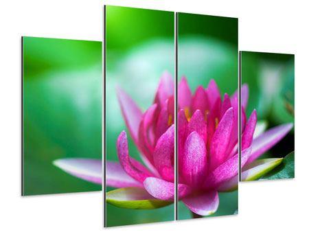 Aluminiumbild 4-teilig Lotus in Pink