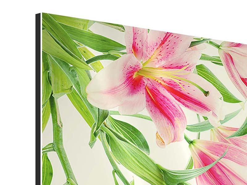 Aluminiumbild 4-teilig Lilien am Wasser