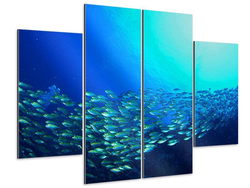 Aluminiumbild 4-teilig Fischschwarm
