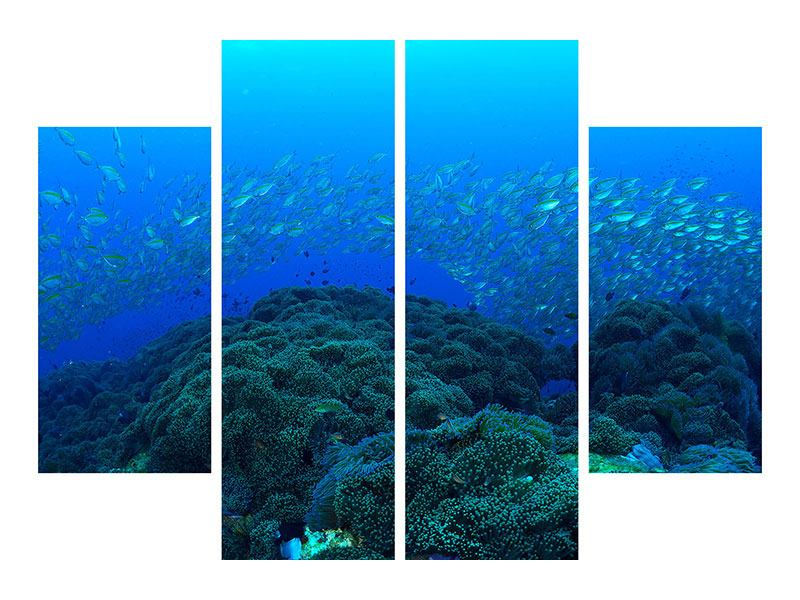 Aluminiumbild 4-teilig Fischschwärme