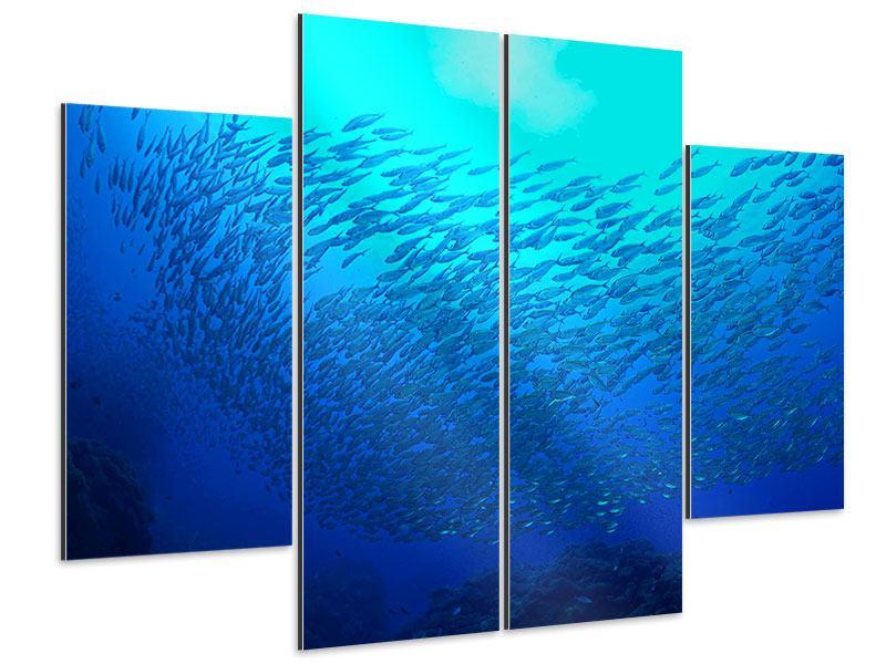 Aluminiumbild 4-teilig Fischwelt