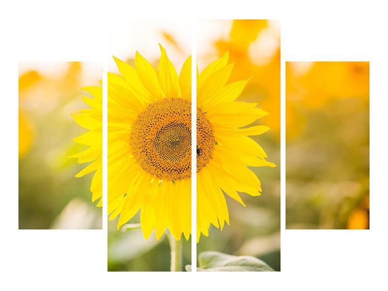 Aluminiumbild 4-teilig Sunflower