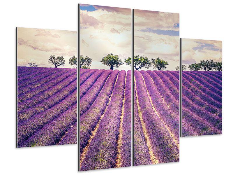 Aluminiumbild 4-teilig Das Lavendelfeld