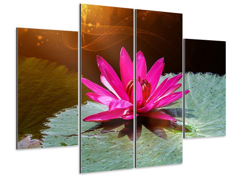 Aluminiumbild 4-teilig Der Frosch und das Seerosenblatt