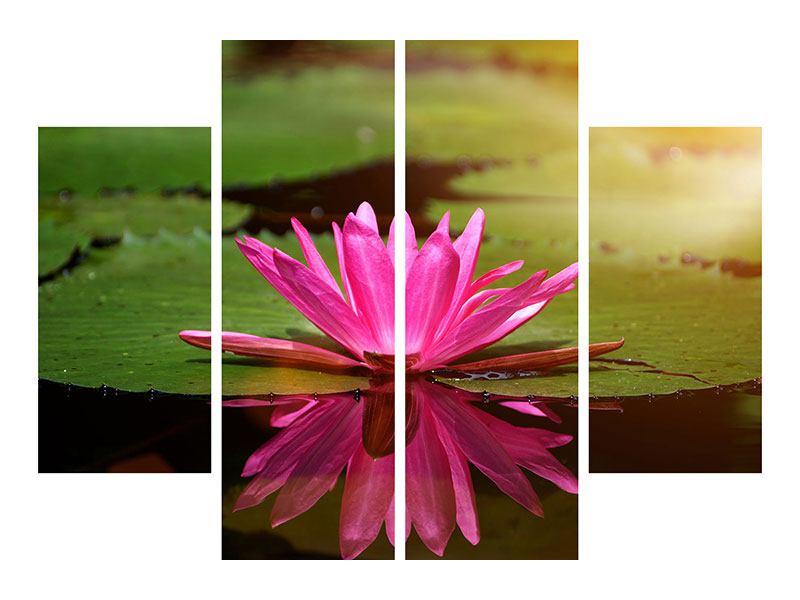 Aluminiumbild 4-teilig Lotus im Wasser