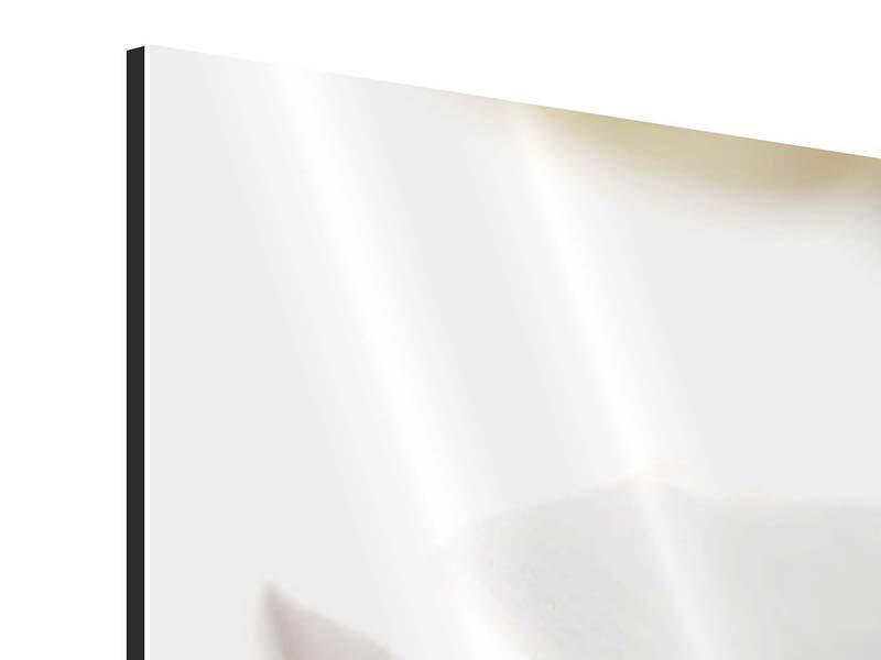 Aluminiumbild 4-teilig XXL Orchideenblüte