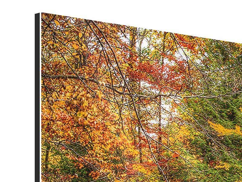 Aluminiumbild 4-teilig Herbst beim Wasserfall