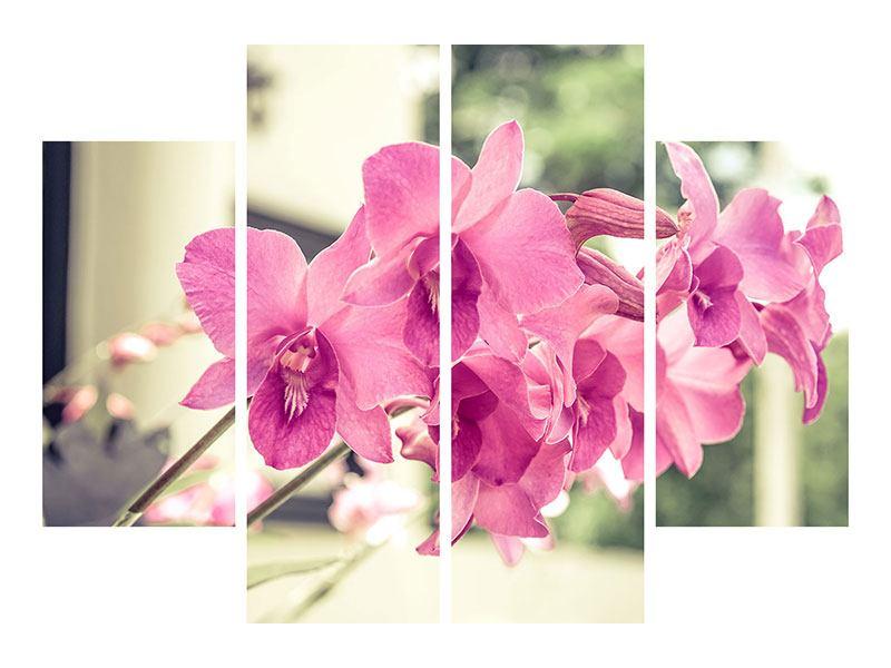 Aluminiumbild 4-teilig Ein Fensterplatz für die Orchideen