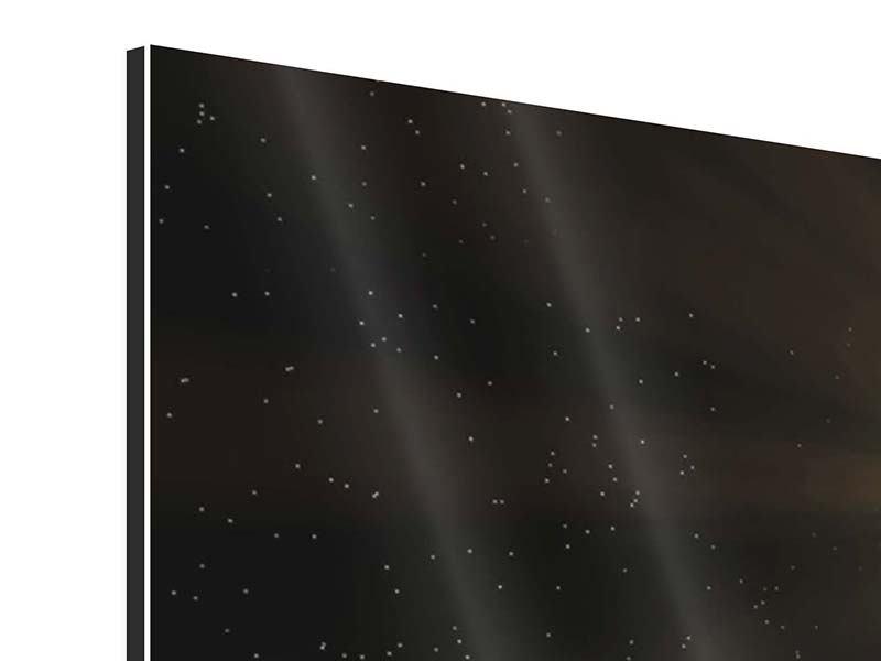 Aluminiumbild 4-teilig Das Raumschiff