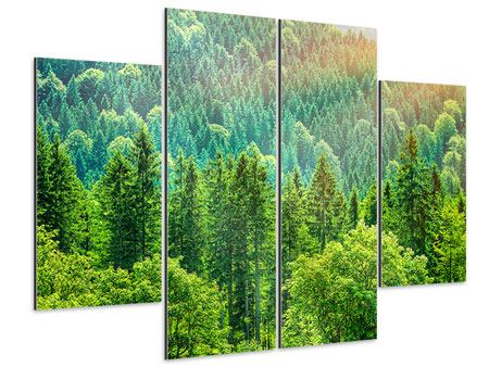 Aluminiumbild 4-teilig Der Waldhügel