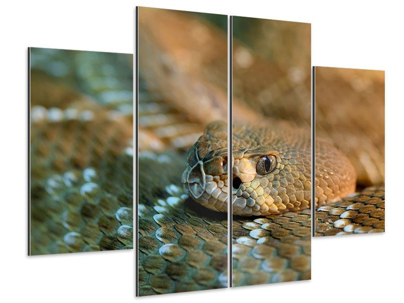 Aluminiumbild 4-teilig Viper
