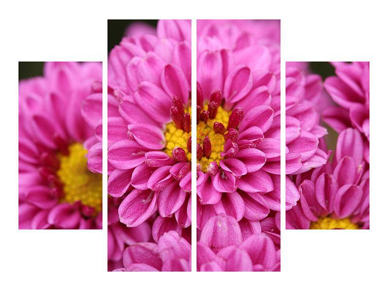 Aluminiumbild 4-teilig Chrysanthemen