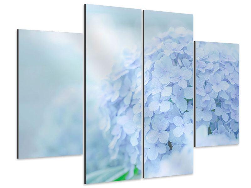Aluminiumbild 4-teilig Die Hortensie