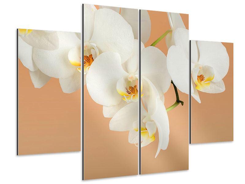 Aluminiumbild 4-teilig Weisse Orchideenblüten