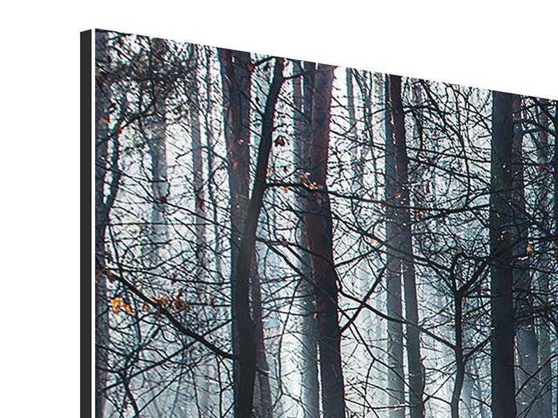 Aluminiumbild 4-teilig Wald im Lichtstrahl