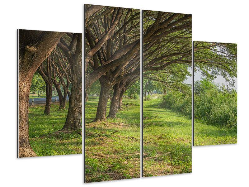 Aluminiumbild 4-teilig Alter Baumbestand