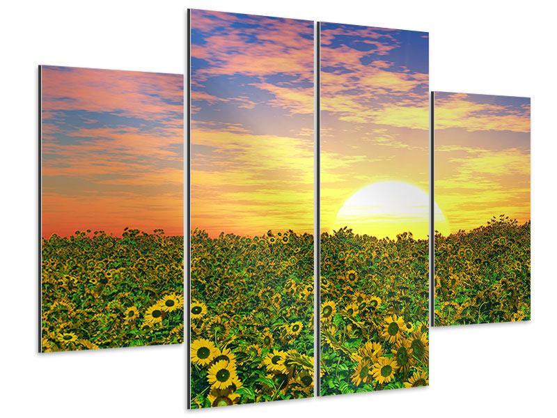 Aluminiumbild 4-teilig Blumenpanorama bei Sonnenuntergang