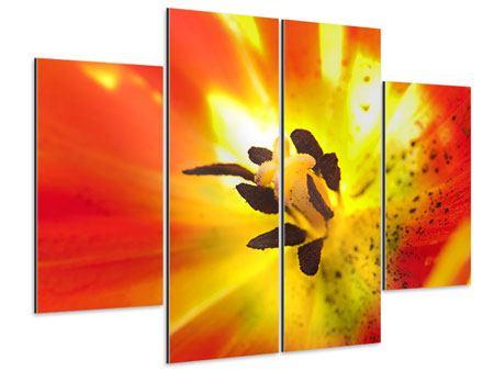 Aluminiumbild 4-teilig Die Narbe einer Tulpe XXL