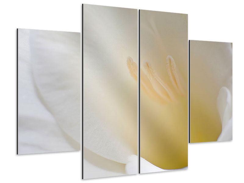 Aluminiumbild 4-teilig In einer Blüte