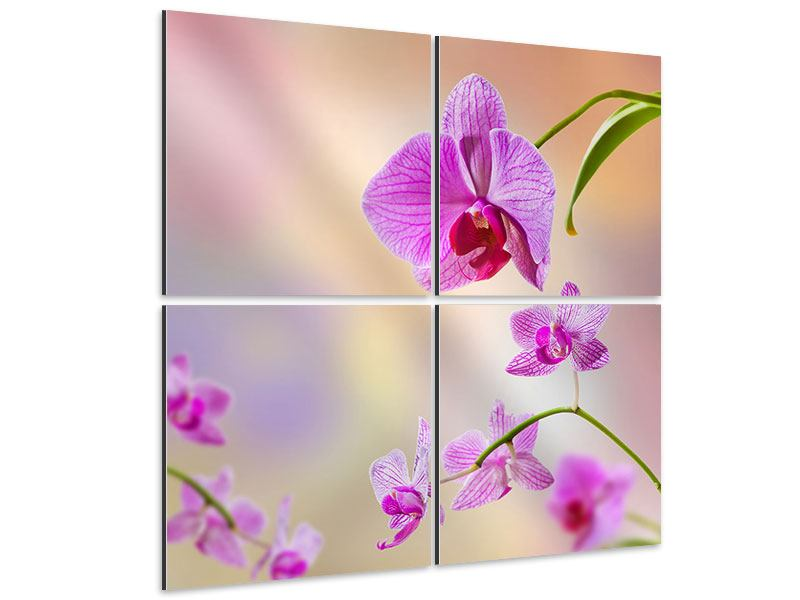 Aluminiumbild 4-teilig Romantische Orchideen