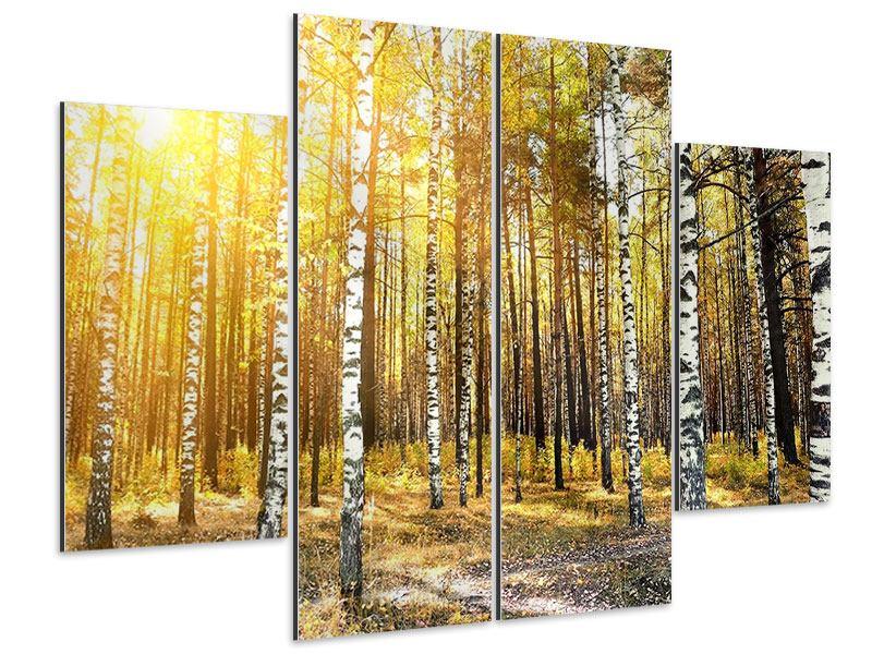 Aluminiumbild 4-teilig Birkenwald