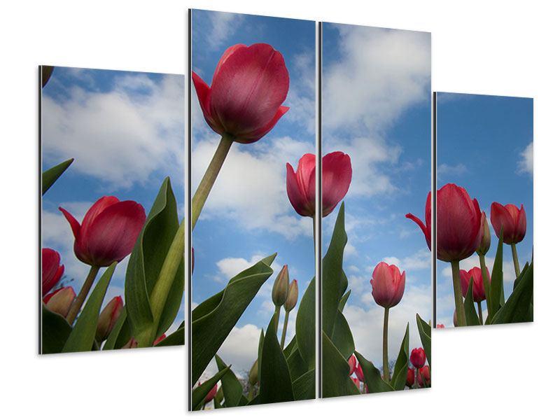 Aluminiumbild 4-teilig Tulpen im Himmel