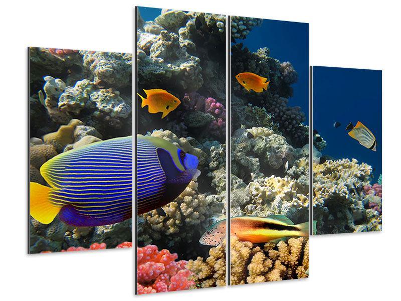 Aluminiumbild 4-teilig Das Aquarium