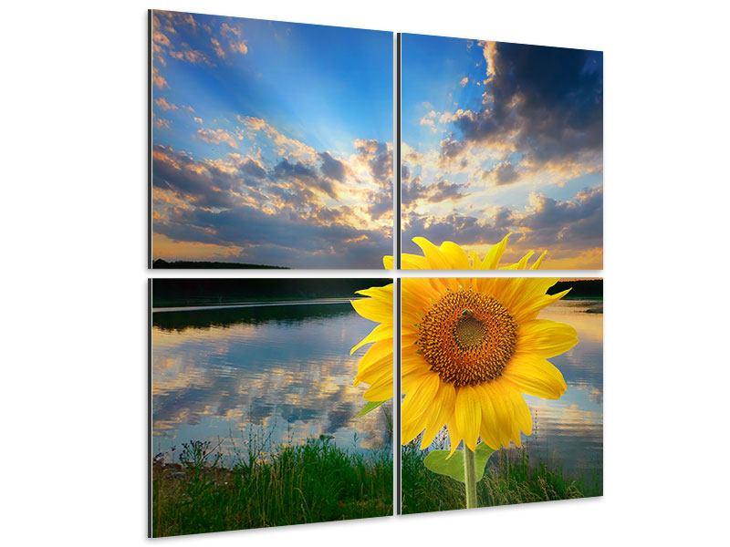 Aluminiumbild 4-teilig Sonnenblume am See