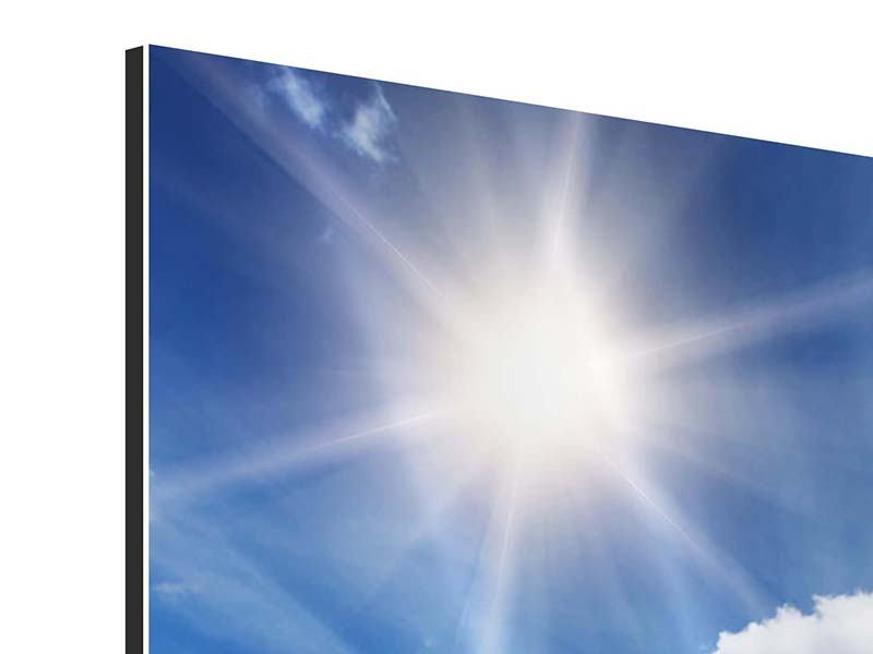 Aluminiumbild 4-teilig Frühlingsgras
