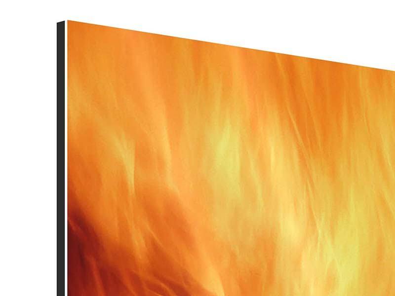 Aluminiumbild 4-teilig Flammen