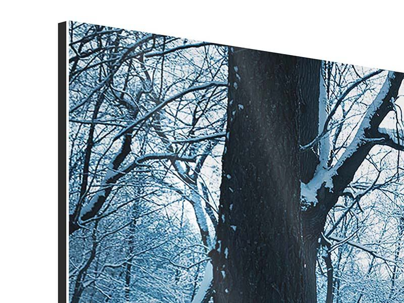 Aluminiumbild 4-teilig Der Wald ohne Spuren im Schnee