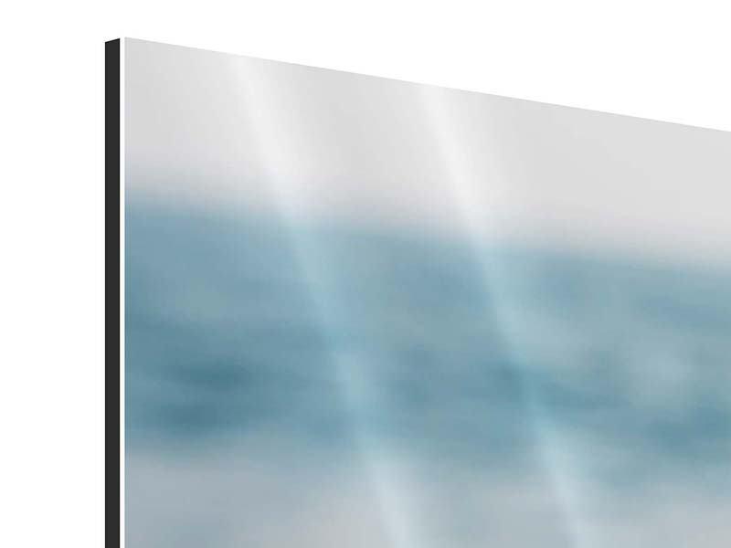 Aluminiumbild 4-teilig Die Muschel