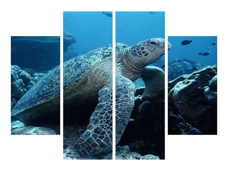 Aluminiumbild 4-teilig Die Meeresschildkröte