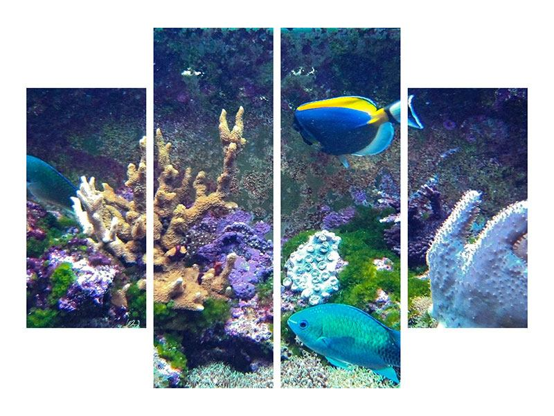 Aluminiumbild 4-teilig Fische
