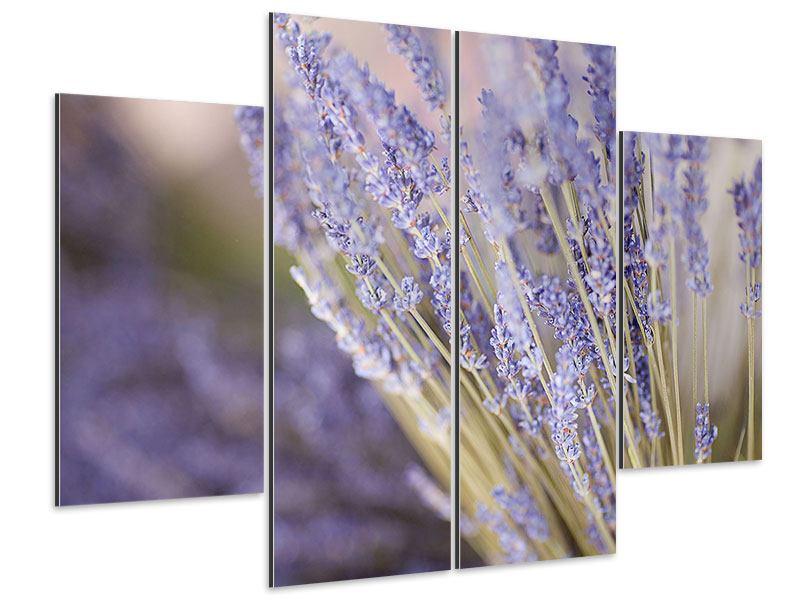 Aluminiumbild 4-teilig Lavendel XXL
