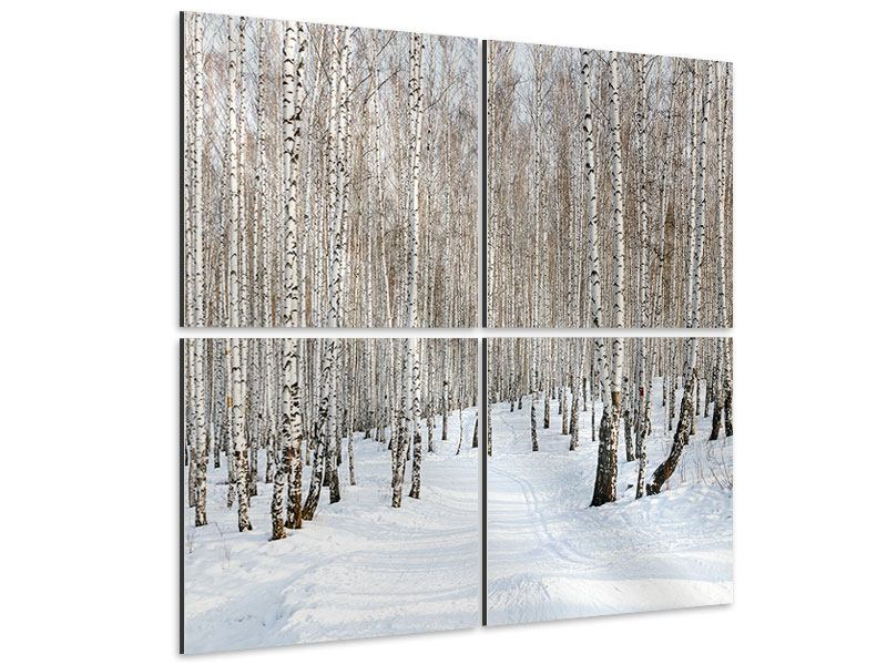 Aluminiumbild 4-teilig Birkenwald-Spuren im Schnee