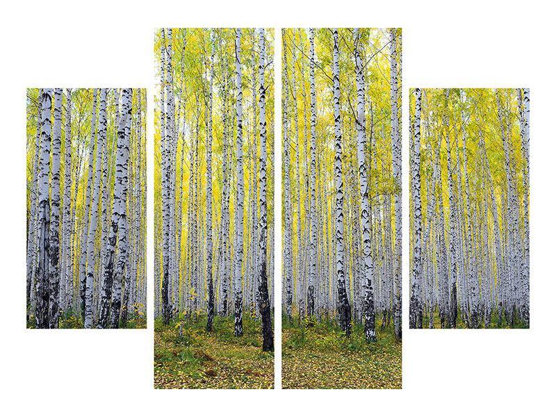 Aluminiumbild 4-teilig Herbstlicher Birkenwald