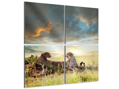 Aluminiumbild 4-teilig Geparden