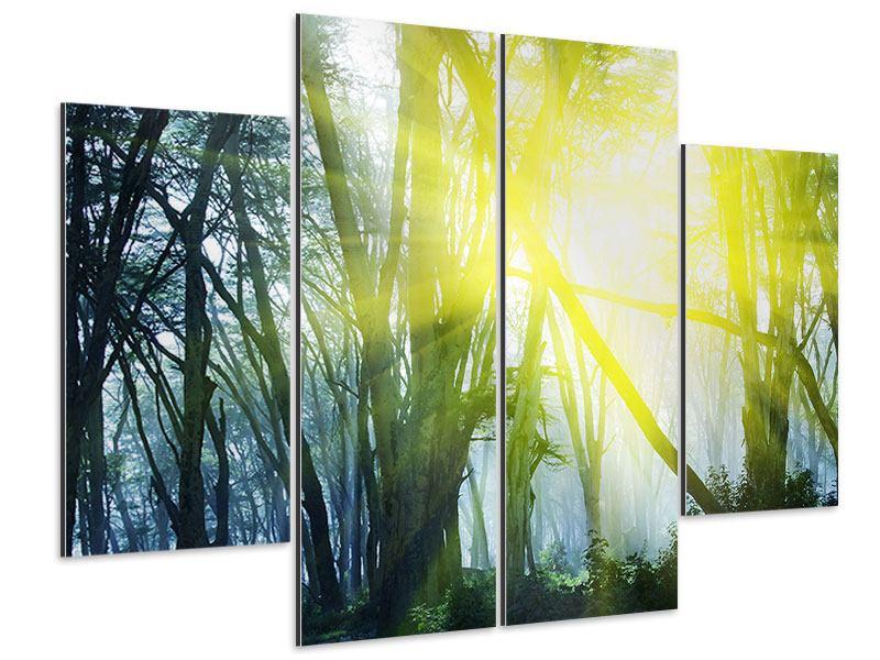 Aluminiumbild 4-teilig Sonnenstrahlen im Wald